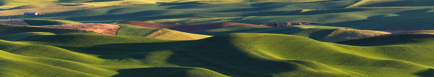 rolling hills in Eastern Washington